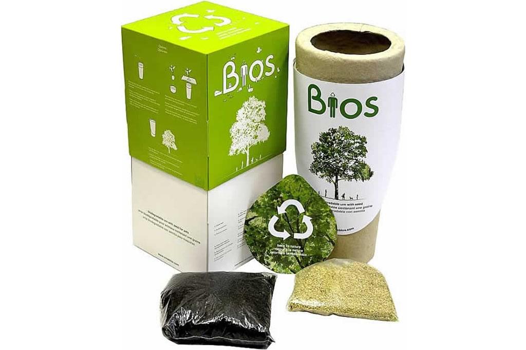 Urna biodegradable para cremación Árbol de la vida