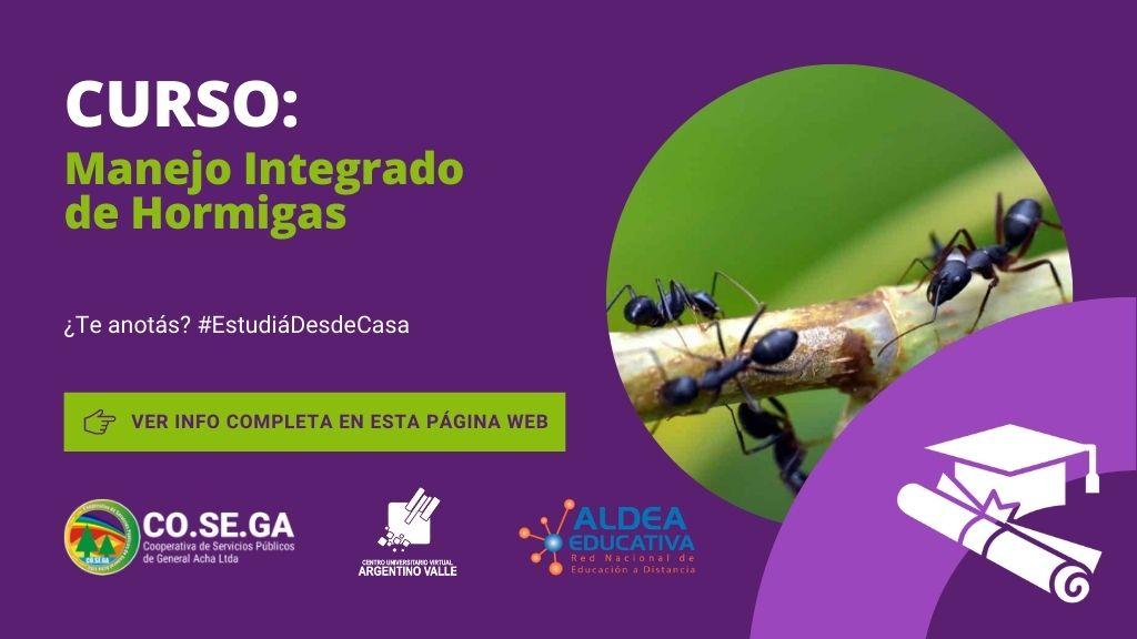 Manejo Integrado de Hormigas